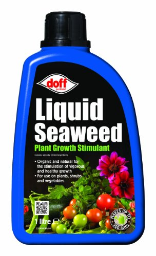 Doff-1L-Liquid-Seaweed-Concentrated-Multi-Purpose-Feed-0