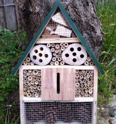 GARDEN-INSECT-BUG-BOX-HOTEL-FOR-BEES-WASPS-LADYBIRDS-BUTTERFLIES-MORE-0