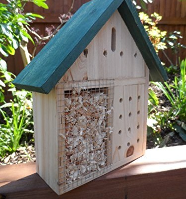 Insect-Hotel-Bug-House-Bee-Hotel-Insect-viewer-for-bees-ladybirds-butterflies-This-insect-house-is-ideal-for-bug-watching-and-a-great-bee-nester-0