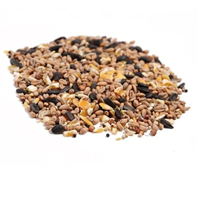 Wild-Bird-Food-20kg-All-Season-0