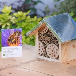 Bee-Hotel-Flower-Seeds-for-Bees-by-Plant-Theatre-Excellent-Gift-Idea-0-0