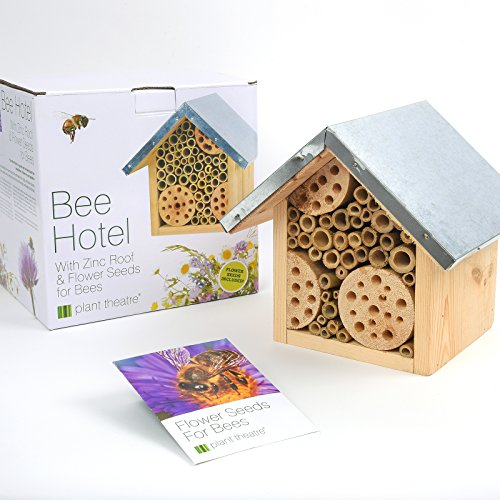 Bee-Hotel-Flower-Seeds-for-Bees-by-Plant-Theatre-Excellent-Gift-Idea-0