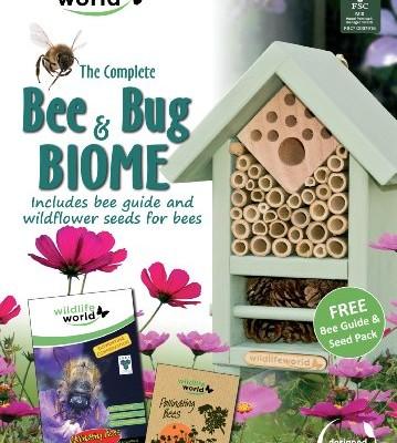 Bee-and-Bug-Biome-0