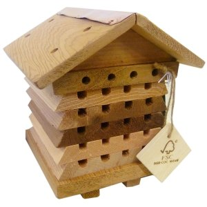 Interactive-Solitary-Bee-Hive-0