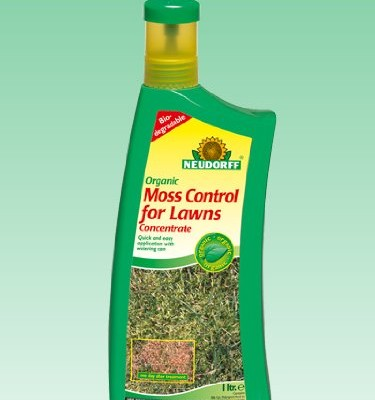 Organic-Moss-Control-for-Lawns-0