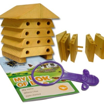 Wildlife-World-Mini-Bugs-Solitary-Bee-Hive-0
