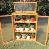 Gardens-Imperial-Gatcombe-3-tier-Wooden-Mini-Greenhouse-with-Polycarbonate-Panels-82cm-W-x-34cm-D-x-107cm-H-0-3